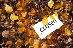 Vorstand mit Herbstblättern Lizenzfreie Stockfotos