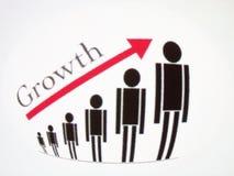 Vortäuschender Kristall der Wachstumabbildung Stockfotos