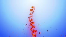 Vortex d'érable et de feuilles colorés Particule brillante en spirale des feuilles d'automne Feuille de danse Animation colorée d clips vidéos