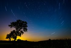 Star trail. Night landscape with a north hemisphere and stars. Vortex Night Exposure with big tree and star trails on background royalty free stock photography
