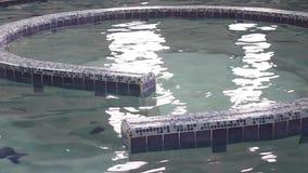 Vortex pool stock footage