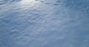 Vorwärtsvon der luftdraufsicht über schneebedeckter Ebene des Winters mit Abdruck am sonnigen Tag Hintergrundbeleuchtung Schneeja stock video