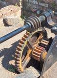 Vorwölbung auf dem Gangrad kommen die Wurmwelle, um ein Zahnradgetriebe zu bilden Lizenzfreie Stockfotografie