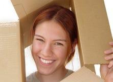 Vos in een doos Royalty-vrije Stock Foto's
