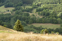 Vosges scenery Royalty Free Stock Photo