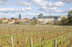 Vosne-Romanee, burgundy, France, saone-et-loire Stock Photography