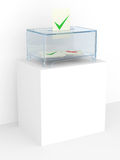 Vote box in a referendum Stock Photos