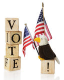 Vote, USA. A toy bald eagle looking at the word \VOTE\ constructed of rustic alphabet block, while he\'s perched on an exclaimation point by two US flags.  On a Stock Photos