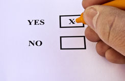Vote Yes. Human hand voting yes with orange pen. Great colors Royalty Free Stock Photos