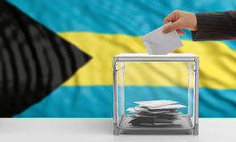 Voter on a Bahamas flag background. 3d illustration Royalty Free Stock Photos