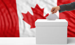 Voter on a Canada flag background. 3d illustration royalty free stock image