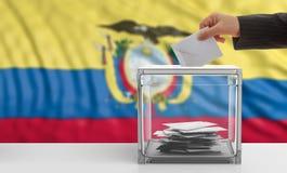 Voter on an Ecuador flag background. 3d illustration Stock Photo