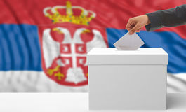 Voter on a Serbia flag background. 3d illustration Stock Photography