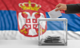 Voter on a Serbia flag background. 3d illustration Royalty Free Stock Images