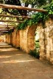 Voûtes d'Alamo Images stock