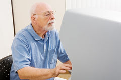 Voting For Disabled Royalty Free Stock Image