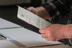Voting-paper royalty free stock image