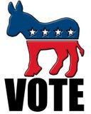 Voto 2008 Fotografie Stock Libere da Diritti