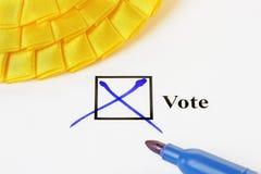 voto Fotografia de Stock