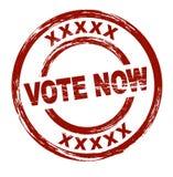 Voto agora Imagens de Stock