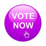 Voto ahora stock de ilustración