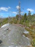 Vottovaara Karelia fotografia stock