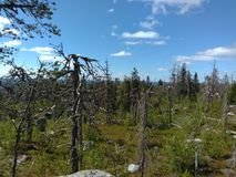 Vottovaara Karelia zdjęcie royalty free