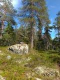 Vottovaara Karelia obraz royalty free