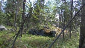 Vottovaara Karelia Arkivbilder