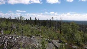 Vottovaara Karelia - obraz royalty free