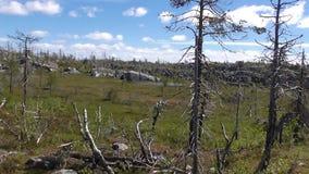 Vottovaara Karelia Arkivbild