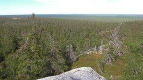 Vottovaara Karelia - beskåda uppifrån av vagga Royaltyfria Foton