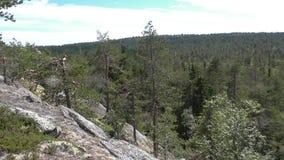 Vottovaara Karelia - sikt från vagga Royaltyfri Bild