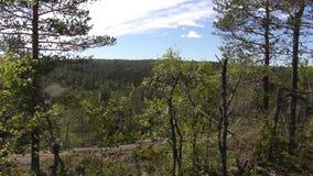Vottovaara Karelia - sikt från vagga Arkivbild