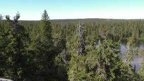 Vottovaara Karelia - widok od skały fotografia royalty free