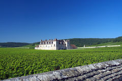 Vougeot. Clos de Vougeot - Burgundy wine region, France royalty free stock image