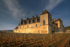 vougeot des clos de France de Bourgogne Images libres de droits