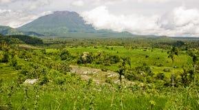 Voulcan e giacimenti verdi del riso Immagini Stock Libere da Diritti
