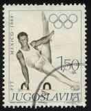 voulting的马的体操运动员 免版税图库摄影