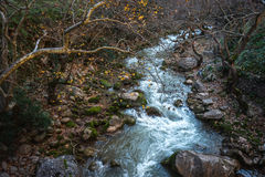 Vouraikos gorge, Peloponnese, Greece Royalty Free Stock Images