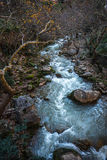 Vouraikos klyfta, Peloponnese, Grekland Royaltyfri Fotografi
