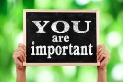 Vous êtes important Image libre de droits