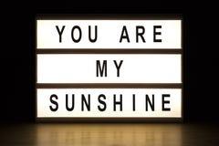 Vous êtes mon panneau de signe de caisson lumineux de soleil Photos libres de droits