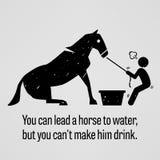 Vous pouvez mener un cheval arroser mais vous ne pouvez pas l'inciter à boire Image libre de droits