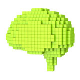 Voxel human brain Royalty Free Stock Images