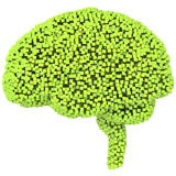 Voxel human brain. 3d render on isolated white Royalty Free Stock Image