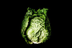 Voy Cabbage Royalty Free Stock Photo