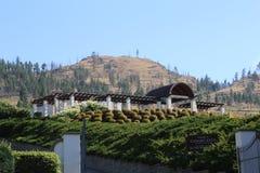 Voyage aux stations de vacances de vin de destination dans le Canada Image libre de droits