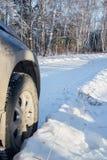Voyage d'hiver en la voiture à la forêt Photos libres de droits