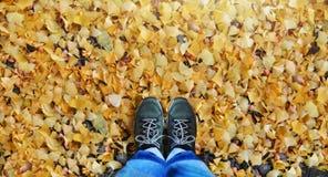 Voyage dans l'automne et l'Autumn Concept Vue supérieure de personne dans Je bleu Photos libres de droits